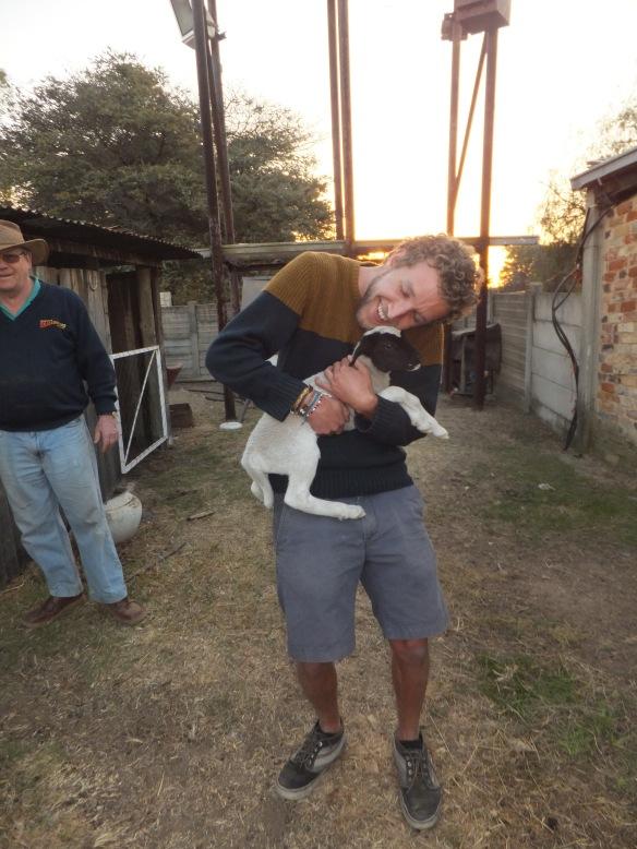 Lamb embracing